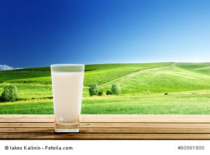 Milk sunny day